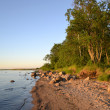 Shore of Lake Ladoga — 图库照片