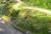 Pedra no musgo — Fotografia Stock