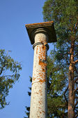 Old column in Mon Repos park — Stock Photo