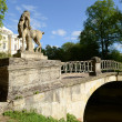 The old bridge in Pavlovsk park — Stock Photo