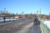 Ioannovskiy Bridge in St. Petersburg — Stock Photo