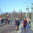 Ioannovskiy Bridge in St. Petersburg — Stock Photo