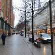 Street in center of Hamburg - Photo