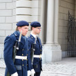 Sweden Royal guard — Stockfoto