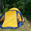 Camping tent — Stock Photo #27783967