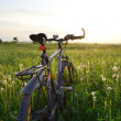 Stock Photo: Bike on the field