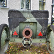 Stock Photo: The old cannon from World War II