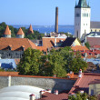 Old Town in Tallinn — Stock Photo