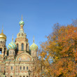 Church of the Saviour on Spilled Blood. — 图库照片