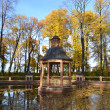 Pond in Summer Garden, St.Petersburg — Stockfoto