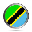 Tanzania flag button. — Stock Vector