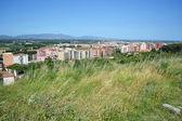 Summer landscape near Figueres — Stockfoto