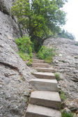 Stone staircase in Montserrat Mountain — ストック写真