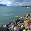 Flowerbed on embankment in Montreux. — Stock Photo