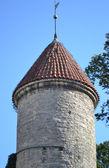 小镇墙在塔林中的塔 — 图库照片