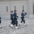 Stock Photo: Sweden Royal guard