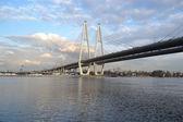 Askılı köprü st.petersburg — Stok fotoğraf