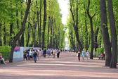 Park Summer Garden in St.Petersburg — Stock Photo