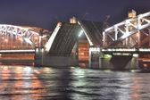 Peter the Great Bridge at night — Stock Photo