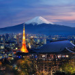 Various travel destination in Japan — Stock Photo