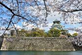 Замок Осака с вишней в цвету — Стоковое фото