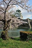 Osaka castle with the cherry blossoms  — Stock Photo