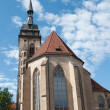 Stiftskirche (Collegiate Church) : South view — Stock Photo
