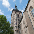 Stock Photo: Stiftskirche (Collegiate Church) : Est Tower (closeup view)