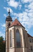 Stiftskirche (Collegiate Church) : South view — Stock Photo