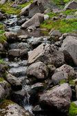 Creek i bergen — Stockfoto