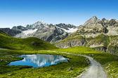 Sentier dans la montagne — Photo