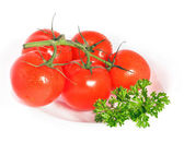 Red tomatoes with parsley — Stock Photo
