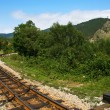 Old narrow gauge railway — Stock Photo