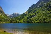 Lake Llebreta in national park Aiguestortes — Stock Photo