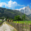 Valbona national park — Stock Photo
