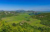 Skadar lake national park — Stock Photo