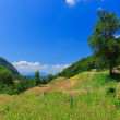 Nature in Montenegro — Stock Photo