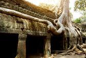 Ta phrom templet — Stockfoto