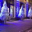 Christmas trees, Moscow — Stock Photo