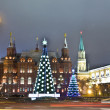 Stock Photo: Moscow, Christmas trees