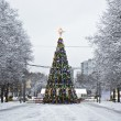 Christmas tree, Moscow — Stock Photo #12699477
