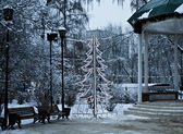 Christmas tree in park, Moscow — Stock Photo