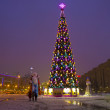 "图库照片: Moscow, Christmas tree on ""Poklonnayhill"""
