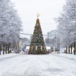 Stock Photo: Christmas tree, Moscow