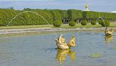 Peterhof, fontane — Foto Stock