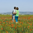Stock Photo: Couple on poppie