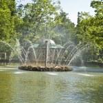 Peterhof, fountain — Stock Photo #14406145
