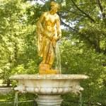 Peterhof, fountain — Stock Photo #14442799