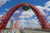 москва, живописный мост — Стоковое фото