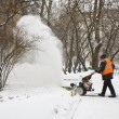 Stock Photo: Snowstorm in Moscow